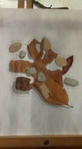 leaves, stones, pistachio shells