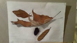 leaves with charcoal